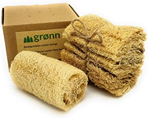 Grønn Loofah Natural Sponge (6-Pack) | Biodegradable and Compostable | Sustainable Eco Friendly Zero Waste Product | Dishwashing Sponge | Kitchen Dish Scrubber | Exfoliating Facial and Body Scrubber