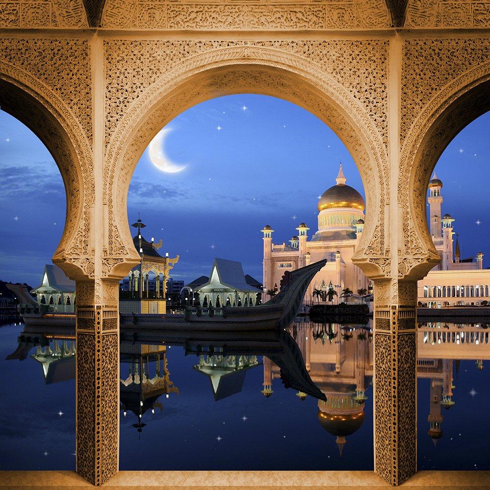 写真バックドロップ – Sultans Palace – 10 x 10 ft。 – 高品質シームレスなファブリック   B00OPFL2XU