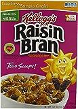 Kellogg's Raisin Bran, 18.7 Ounce (Pack of 3)