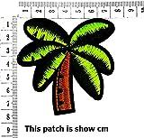 Palm Tree Coconut Tropical Beach Plants Cartoon