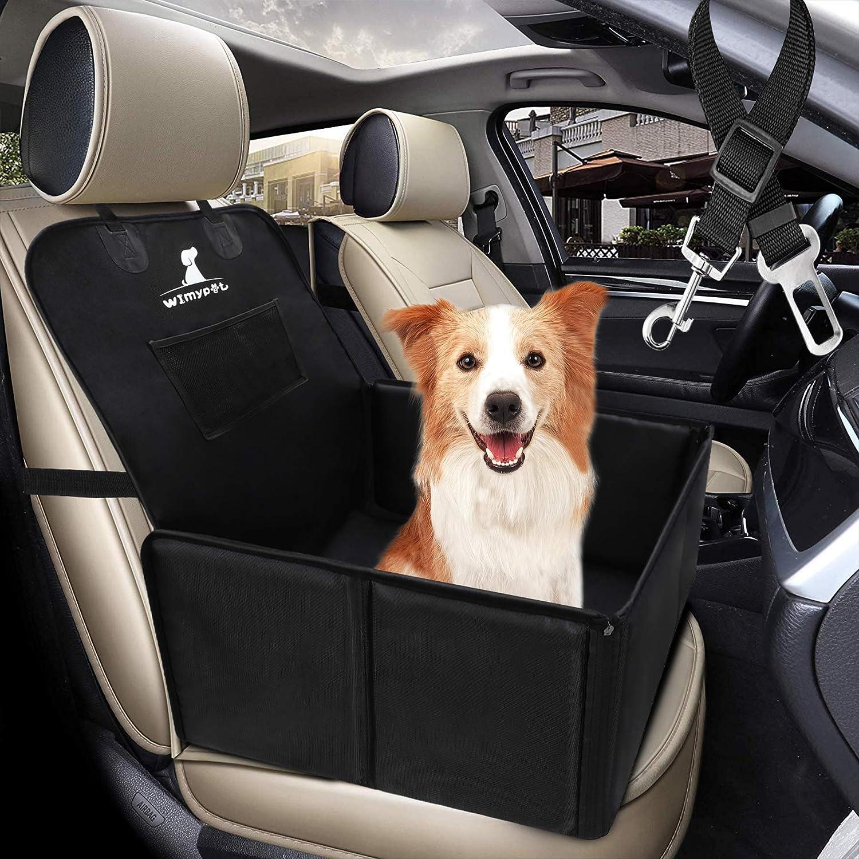 Eine Hundetragetasche ist perfekt für kleine Hunde