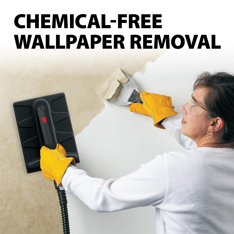 Wagner Spraytech Steam Cleaner