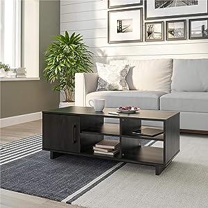 Ameriwood Home Southlander, Black Oak Coffee Table