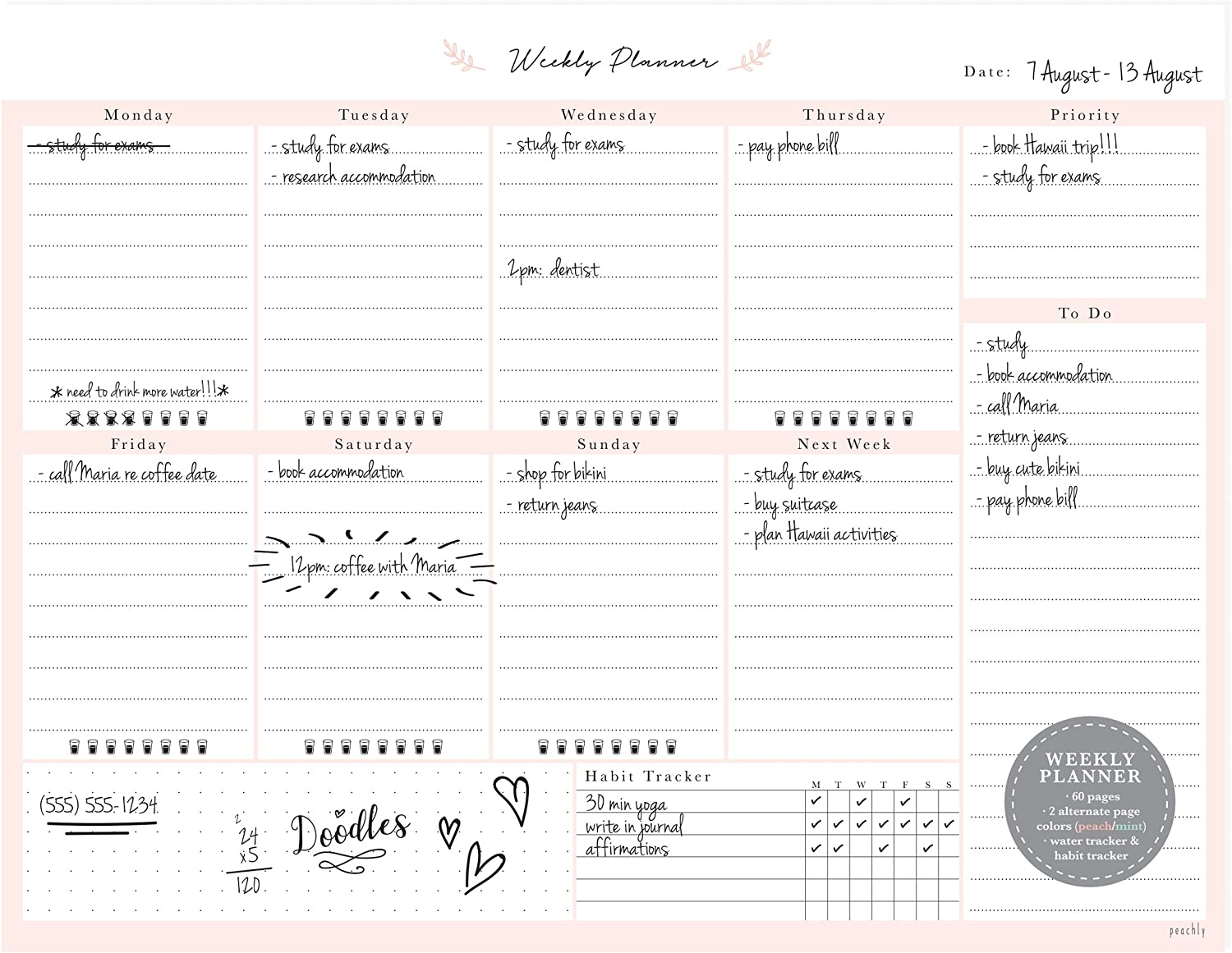 Desktop Weekly Planner Notepad 8.5x11 | 60 Undated Tear-Off Pages | Schedule Daily to-Do Lists | Increase Your Productivity in Less Than 5 Minutes A Week | Achieve Your Goals | Peach and Mint Fern