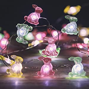 MIYA LIFE Easter Bunny Rabbit String Lights 10 ft 40 LEDs Copper Wire with The Remote &Timer for Spring Festive Patio Birthday Christmas Valentine's Day Thanksgiving Seasonal Party Supplies Home Decor