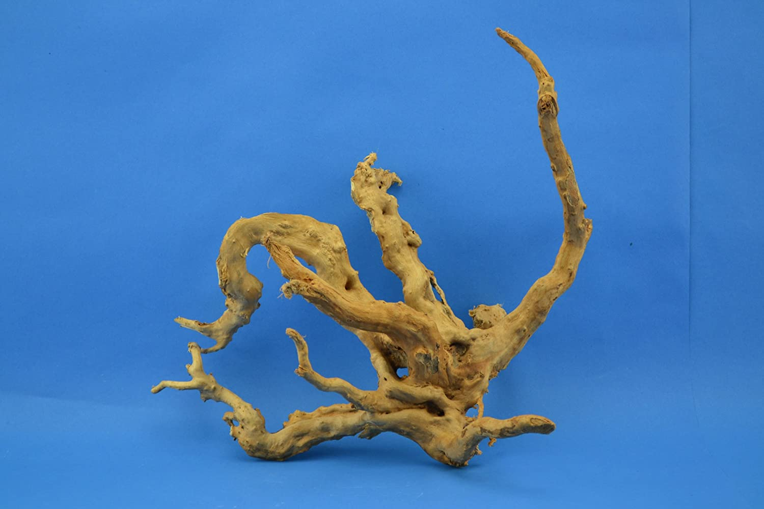 1 pcs finger wood 20-40 cm, root for aquarium Feed Decor