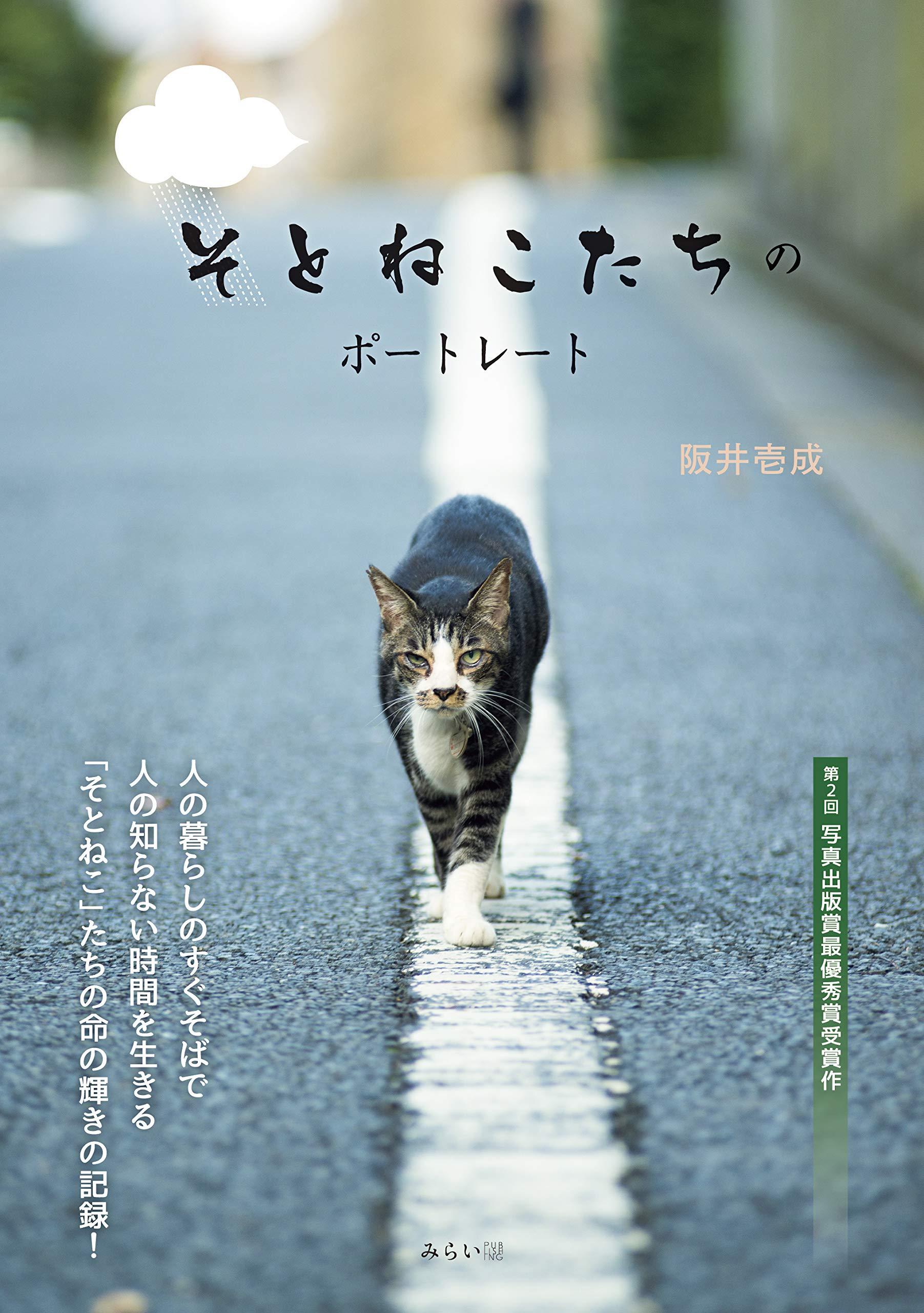 カメラマン db ネコ