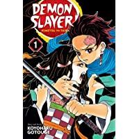 Demon Slayer: Kimetsu no Yaiba, Vol. 1 (Volume 1)