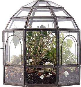 "Urban Born Glass Terrarium, Birdcage - 9""x9""x10"" (Urban Black Steel, Large)"