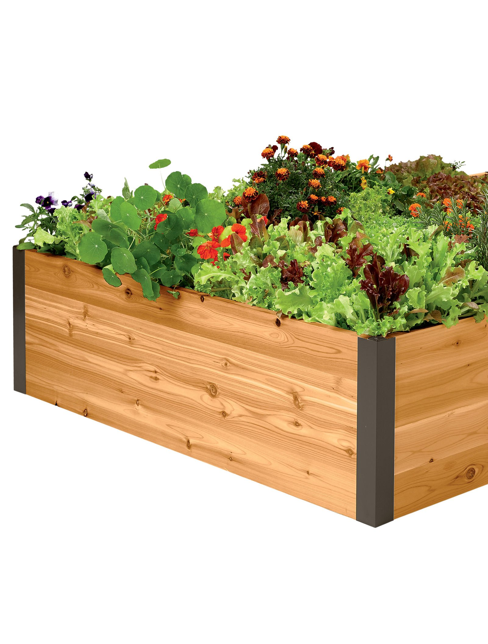 Cedar Raised Garden Bed 4' x 12' x 15'' by Gardener's Supply Company