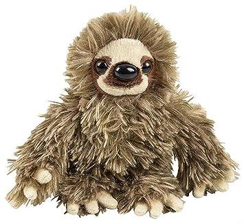 Amazon Com Wildlife Tree 6 Baby Three Toed Sloth Stuffed Animal