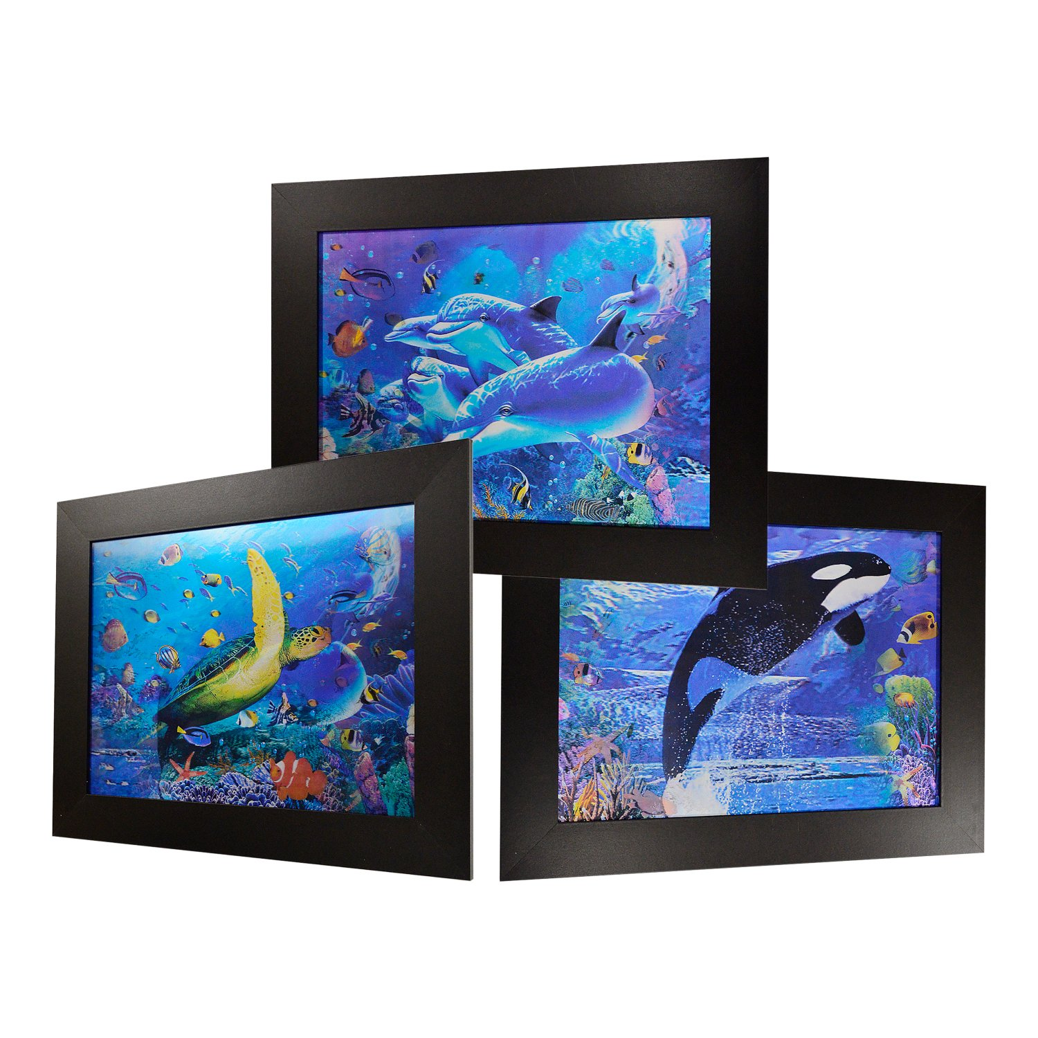 3D Lenticular Framed Animal Picture (Sea Life)