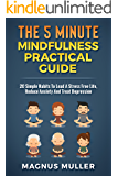 The 5 Minute Mindfulness Practical Guide: 20 Simple Habits To Lead A Stress Free Life, Reduce Anxiety And Treat Depression (The 5 Minute Self Help Series Book 3)