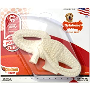 Nylabone Dental Dinosaur Chew