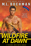 Wildfire at Dawn (Firehawks Smokejumpers Book 1)
