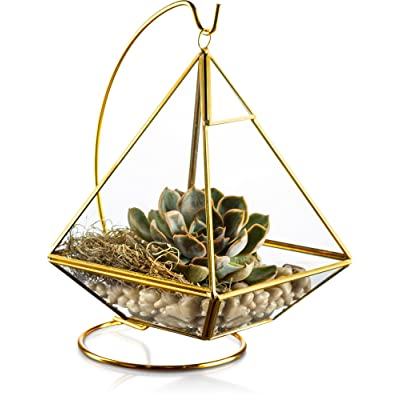 KooK Geometric Pyramid Hanging Terrarium with Stand - Gold: Garden & Outdoor