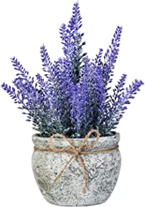 chuangxindaye Artificial Mini Potted Flowers Plant Lavender for Home Decor Party Wedding Garden Office Patio Decoration (Grey Ceramics)