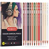 PANDAFLY Professional Charcoal Pencils Drawing Set, Skin Tone Colored Pencils, Colour Charcoal Pencils, Pastel Chalk Pencils