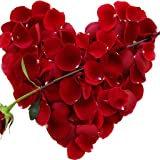 Valentines Day Poem Gifts for Her