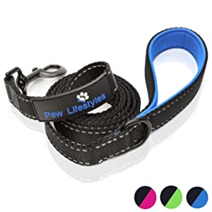 Paw Lifestyles Extra Heavy Duty Dog Leash