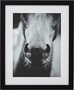 "Amazon Brand – Stone & Beam Modern Black and White Horse Nose Photo Framed Wall Art Decor - 13"" x 15"" Frame, Black"