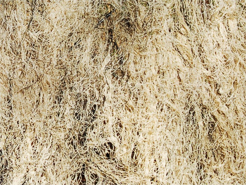 Ghillie Blanket 5' X 9' (Desert)
