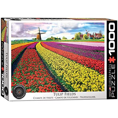 EuroGraphics (EURHR Tulip Field - Netherlands 1000Piece Jigsaw Puzzle: Toys & Games