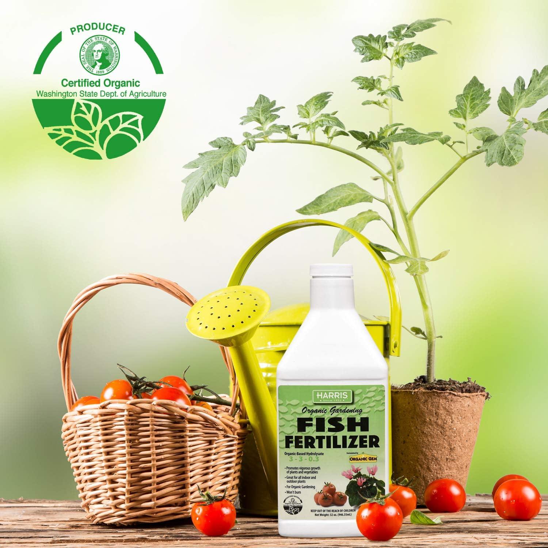 Amazon.com: Harris Fertilizante orgánico para plantas y ...