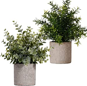 FagusHome Artificial Plants Potted 2 Pcs Mini Potted Artificial Eucalyptus Plants Plastic Fake Greenery Faux Plants in Pots for Indoor Décor (A)