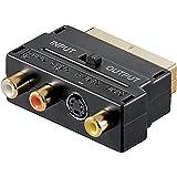 Scart Cinch Adapter vergoldete Kontakte