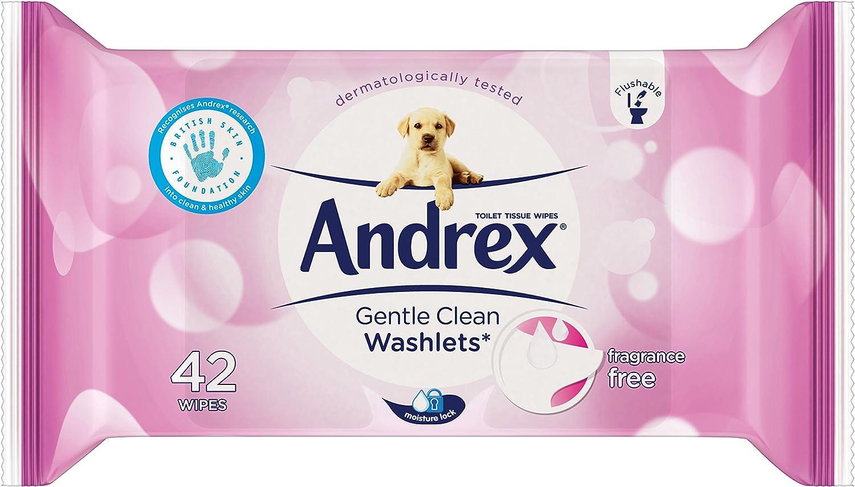 Andrex Washlets Skin Kind Flushable Toilet Wipes 12 Packs Whole Box