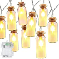 DecorNova 30-LED Battery Operated Glass Jar Fairy String Lights