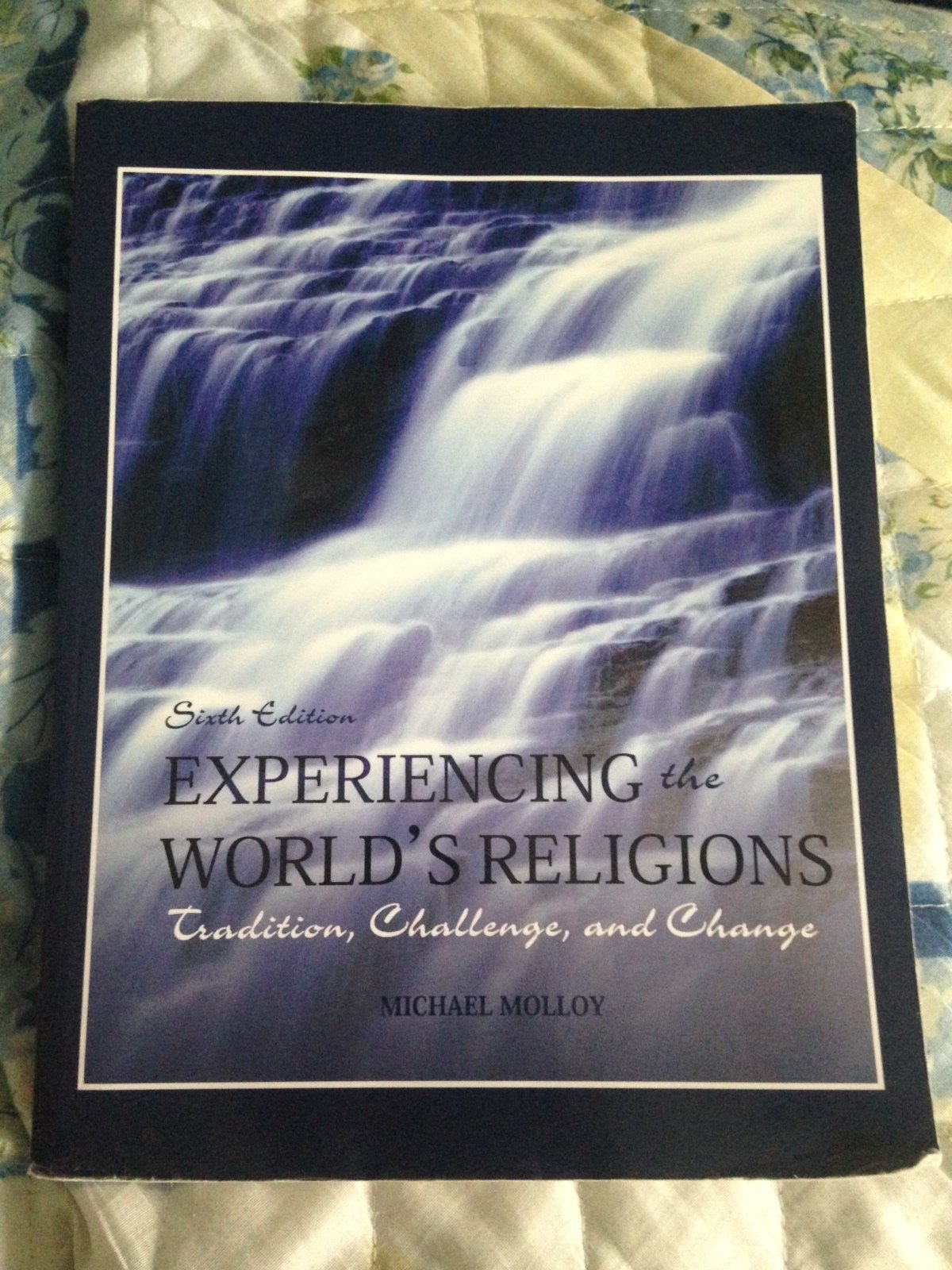 Experiencing the World's Religions; Tradition, Challenge, and Change, 6th  Custom Hawaii Edition: 9781121770058: Amazon.com: Books