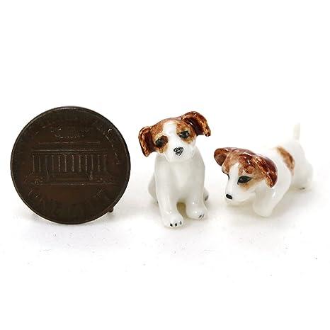 Amazon.com: 2 Jack Russell Terrier Perros Cachorro miniatura ...