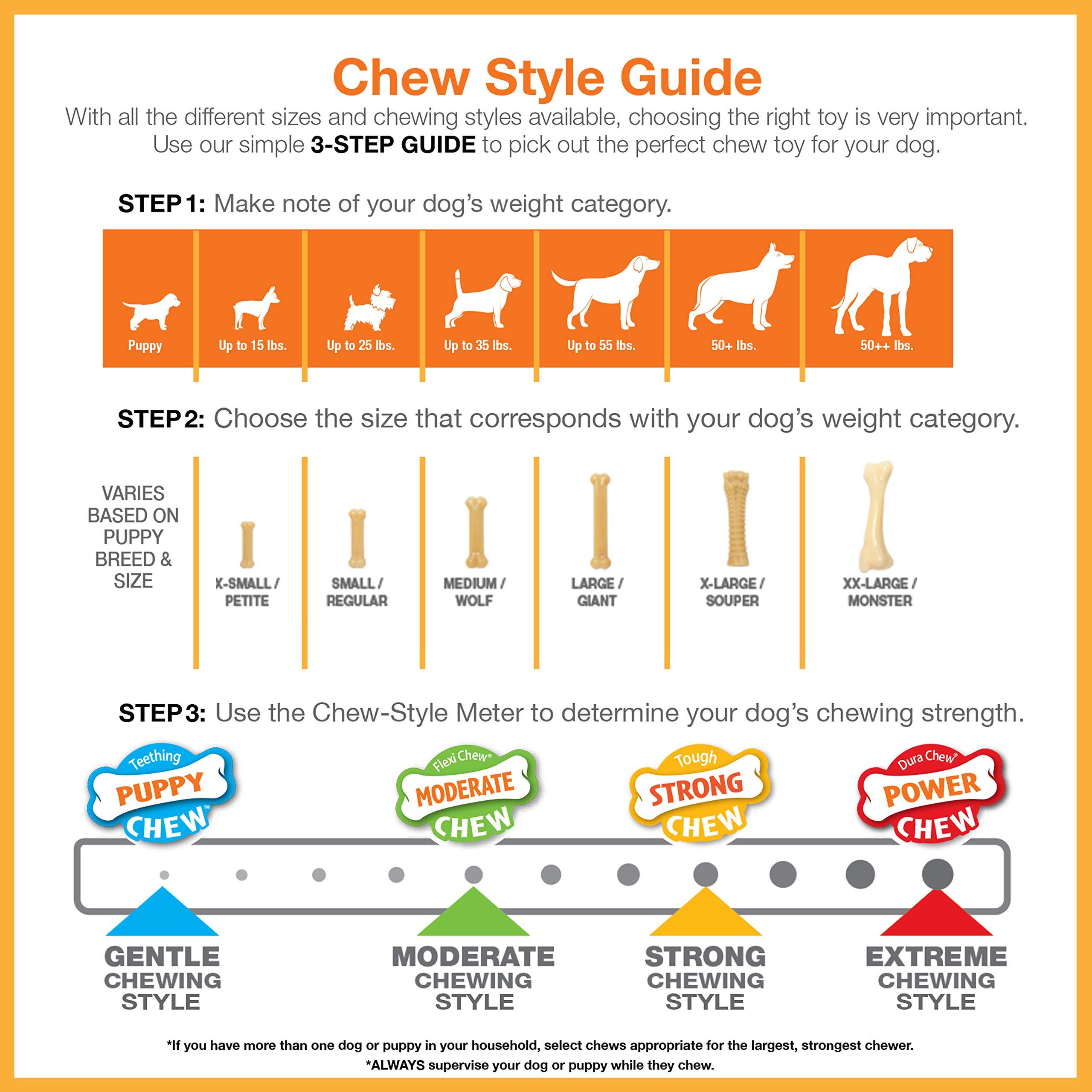 Nylabone Dura Chew Regular Chicken Flavored Bone Dog Chew Toy