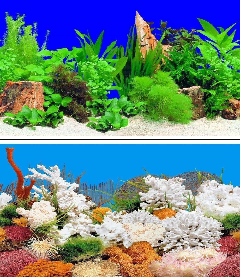 Height 24 Length 8 FT Hidom Aquarium Background