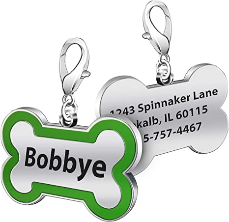 Blue and Green Small Dog Tag Personalized Pet ID