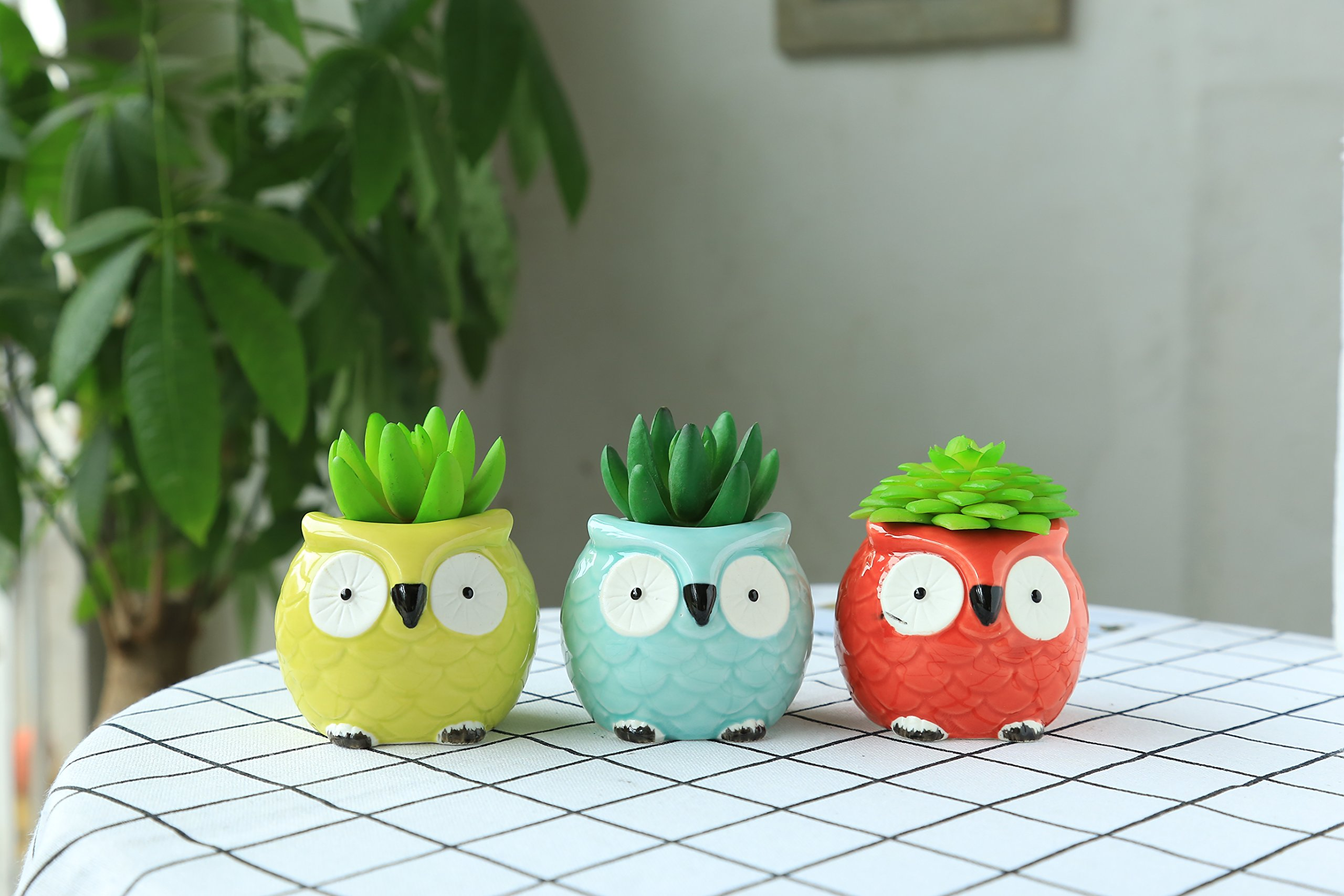 PONTE COLLECTION Succulent Pot Ceramic Owl Flower Planter Pot Handmade Mini Small Flower & Herb Pot Cactus Plant Pot Colorful 3-Pcs (Small Round Eyes) by PONTE COLLECTION