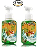 Bath & Body Works, Gentle Foaming Hand Soap, Vanilla Bean Noel (2-Pack)