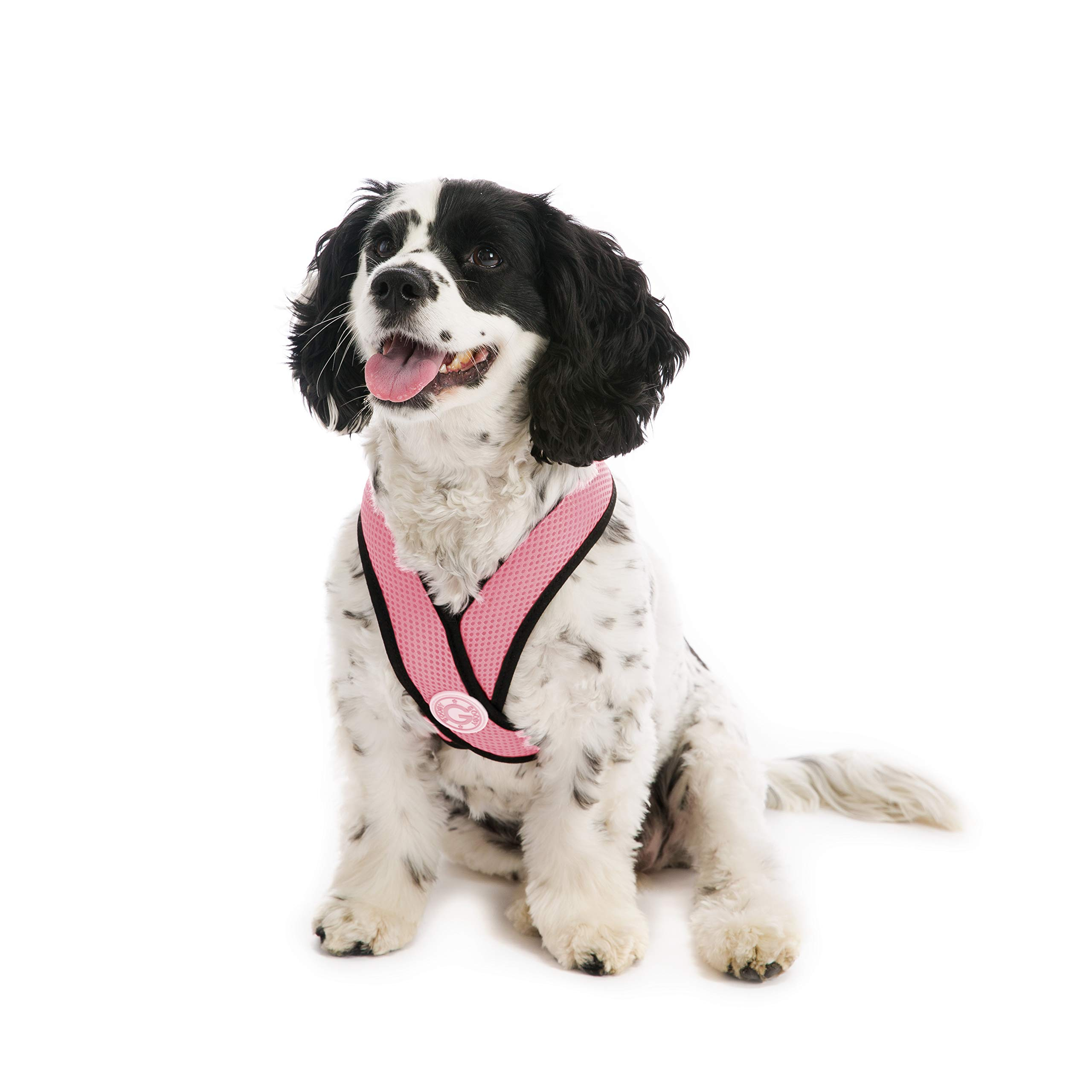 Gooby - Comfort X Head-in Harness, Choke Free Small Dog Harness with Micro Suede Trimming and Patented X Frame, Pink, X-Large by Gooby