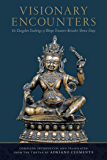 Visionary Encounters: The Dzogchen Teachings of Bönpo Treasure-Revealer Shense Lhaje