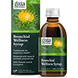 Gaia Herbs, Bronchial Wellness Herbal Syrup - Immune Support Supplement, Soothing Support for Throat and Respiratory Health w
