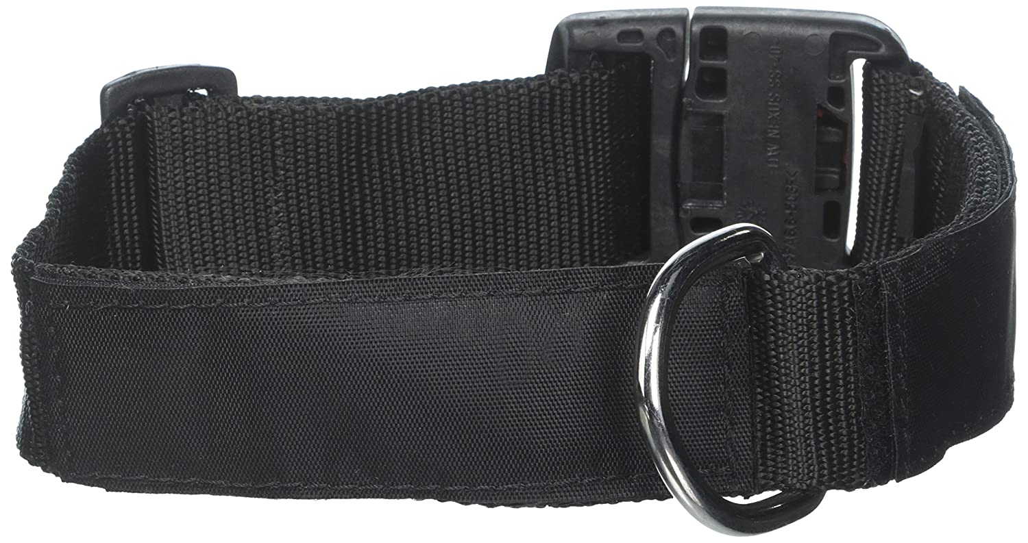 Dean & Tyler Nylon Patch Collar with Balance Assistance Dog Patches, Medium, Fits Neck 21 to 26-Inch