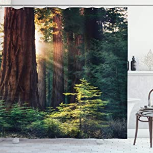 """Ambesonne National Parks Shower Curtain, Morning Sunlight in Wilderness Yosemite Sierra Nevada United States Nature, Cloth Fabric Bathroom Decor Set with Hooks, 70"""" Long, Green Brown"""