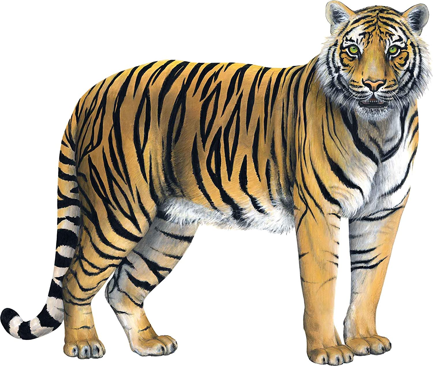 Walls of the Wild Tiger Wall Decal (38 in. X 32 in.)