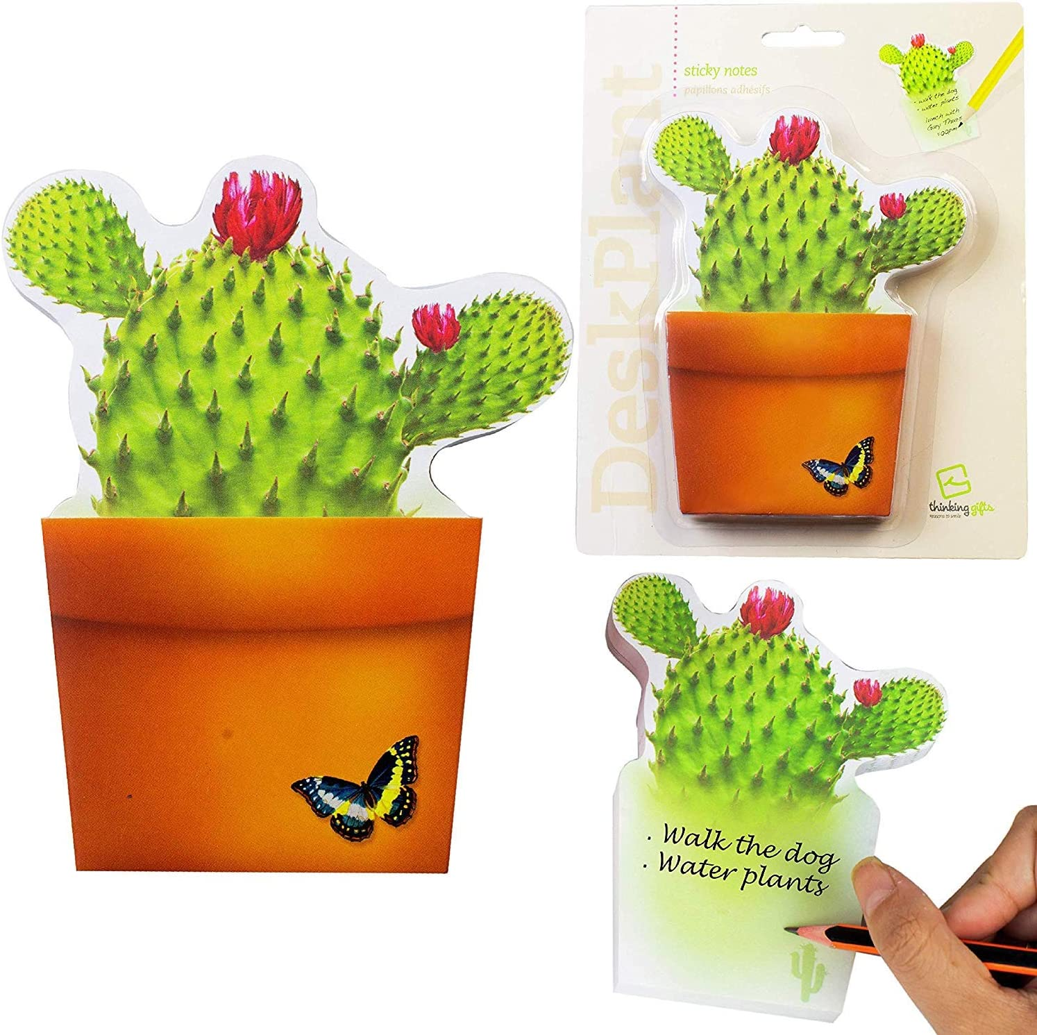 DeskPlant Desk Tidy Fun Organiser Pen Holder Pot Sticky Notes Note Pad School Office Gift - Bloomnotes Cactus