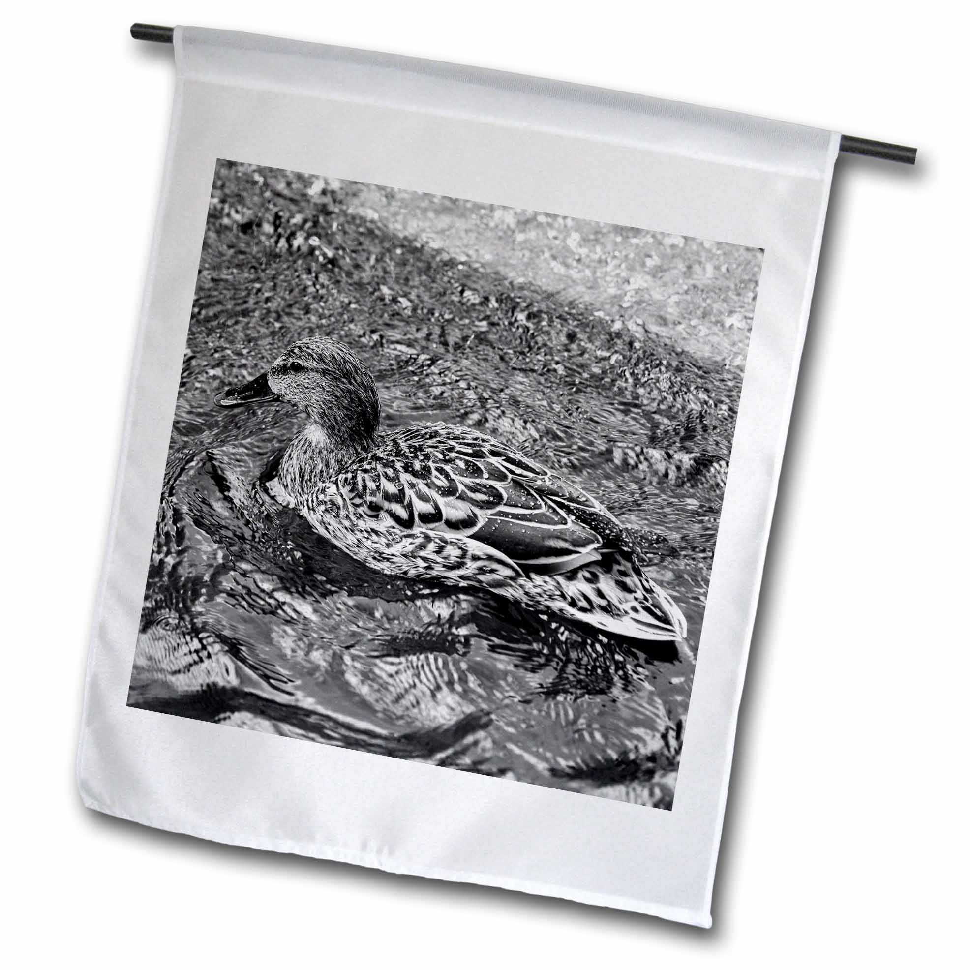 3dRose Alexis Photography - Birds - Mallard duck in a bubbling water of a city fountain, black and white - 18 x 27 inch Garden Flag (fl_281187_2)
