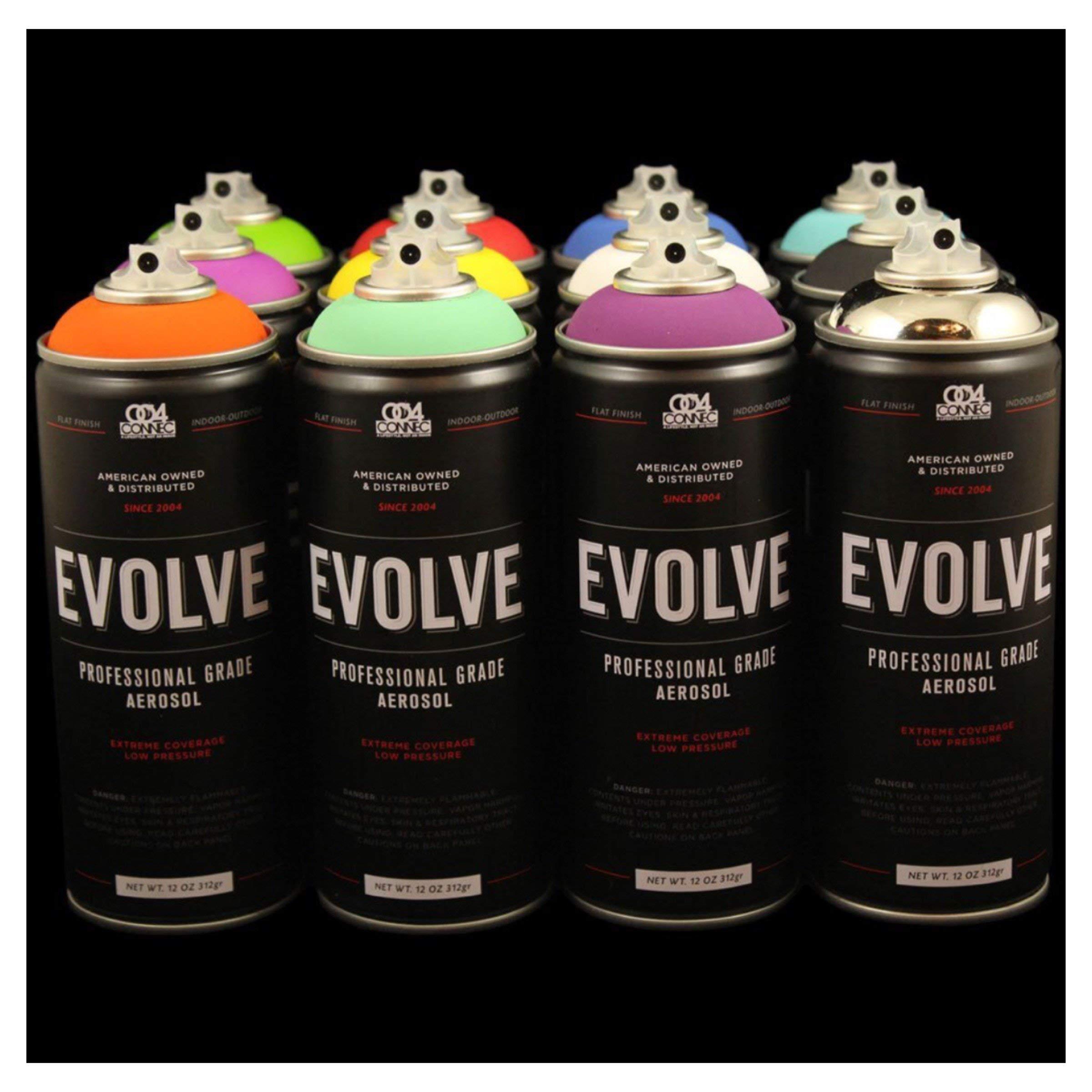 Evolve 12 pack, MTN, Montana, Belton & Molotow & Ironlak Spray Paint by Evolve