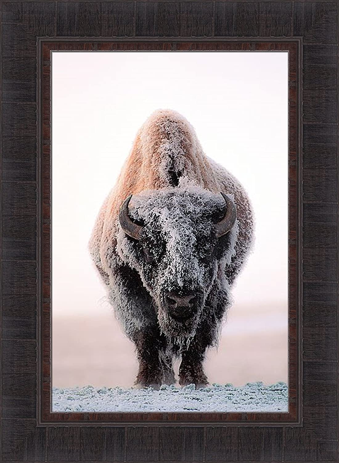 Home Cabin Décor Ghost of The Plains by Gary Crandall 17x23 Bison American Buffalo Winter Snow Frost Photograph Framed Art Print Picture