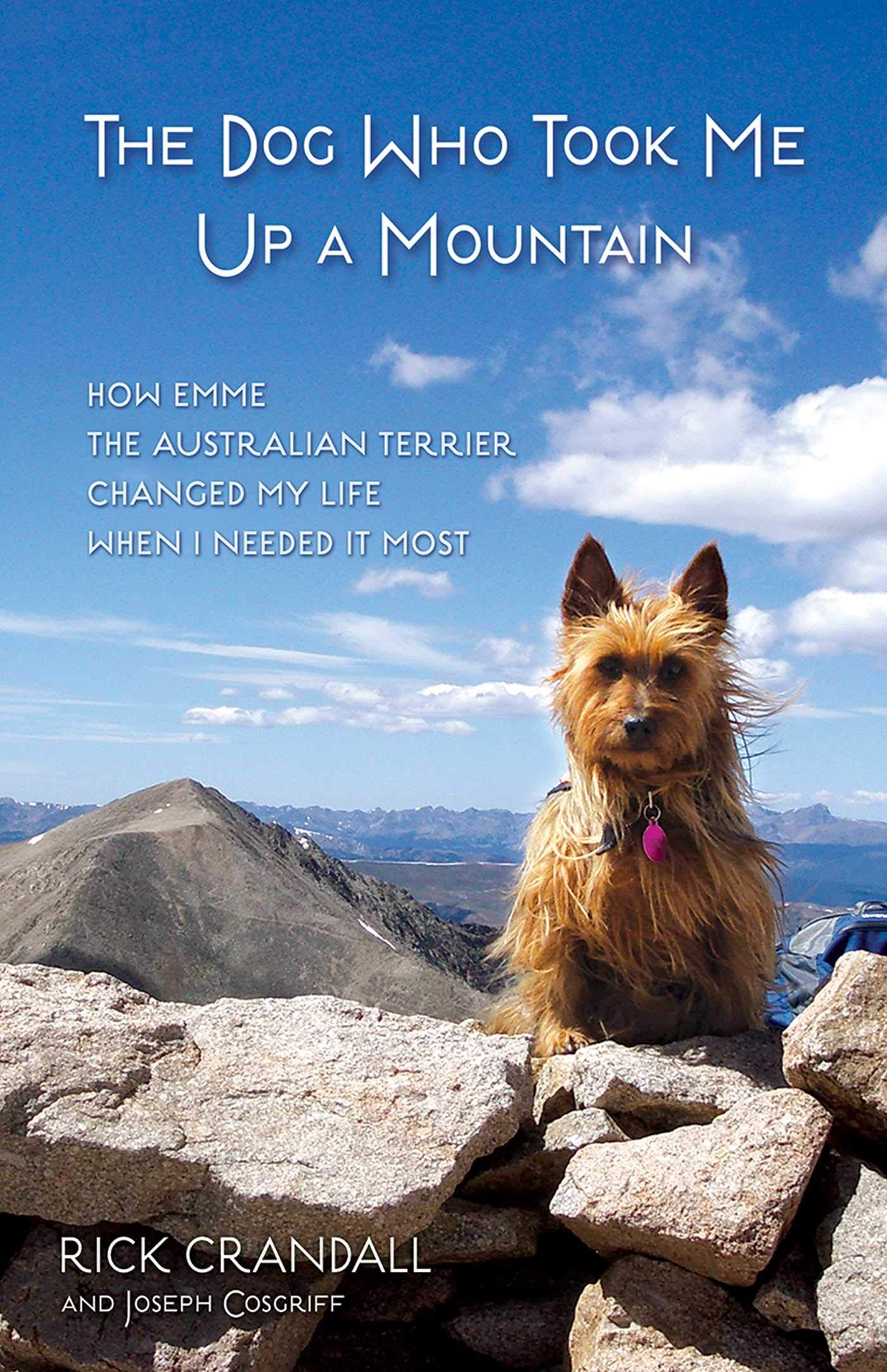 The Dog Who Took Me Up a Mountain: How Emme the Australian Terrier Changed My Life When I Needed It Most by Health Communications Inc